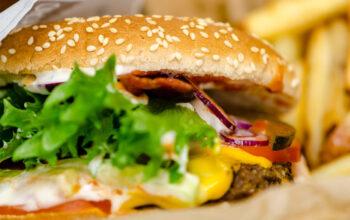 Burger-AUNOVIS-Social